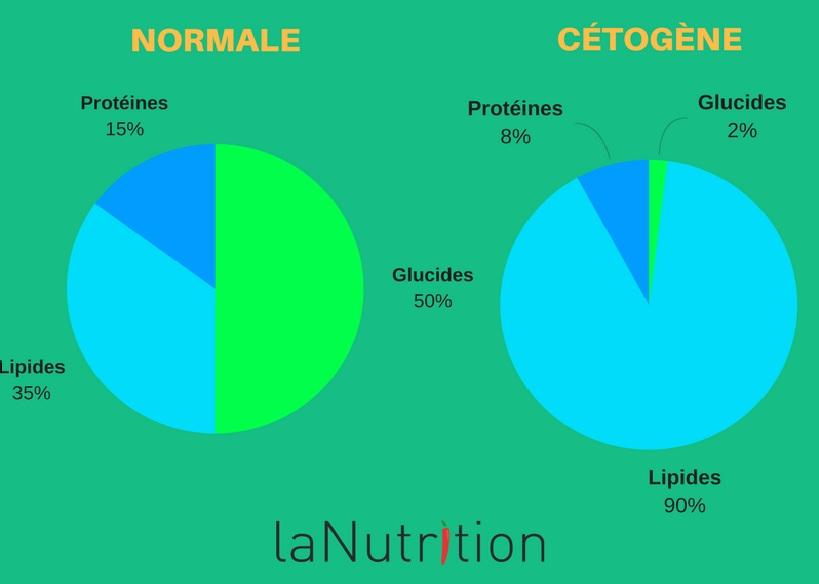 alimentation-cétogène-chien-nutrition