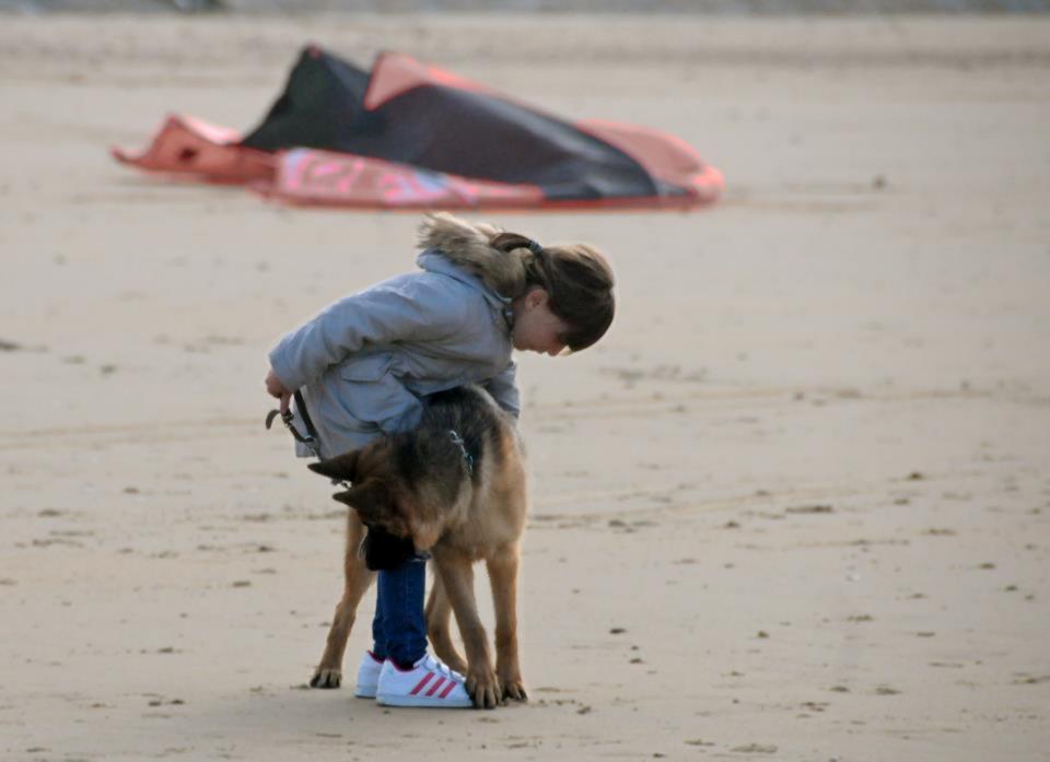 adoption_chien_enfant_conseil