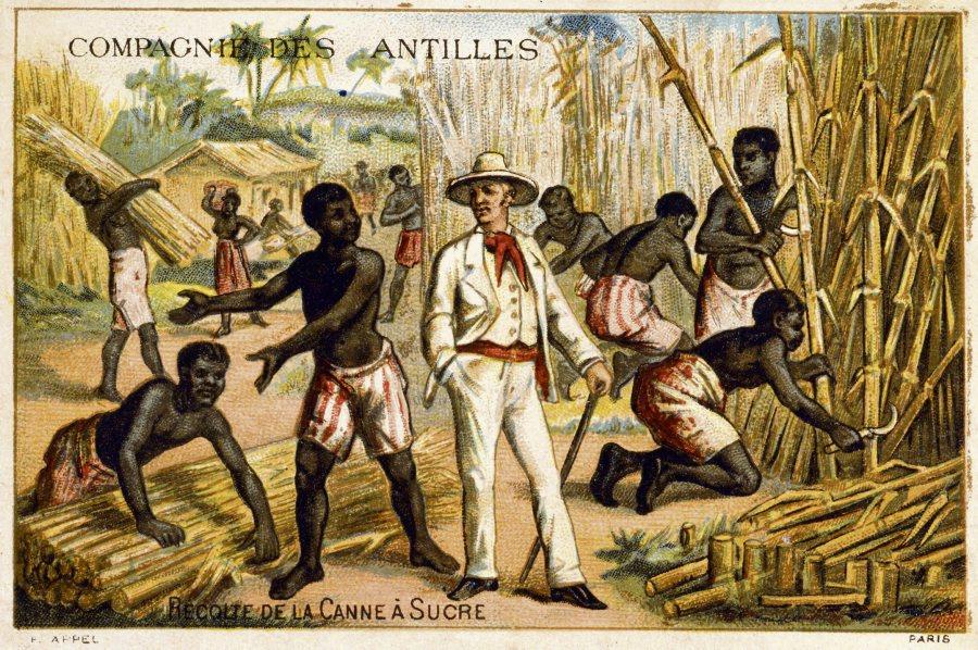esclavage_maître